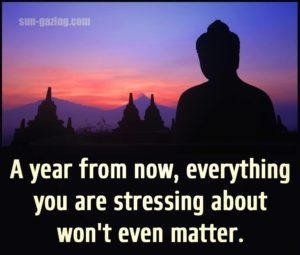 non stress in a year